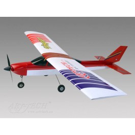 Wing tiger airplane